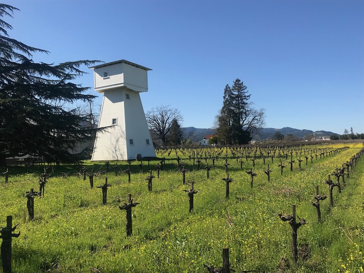 Rossi Estate, Rutherford, Napa Valley