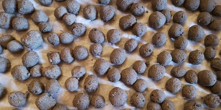 San Donato - seed bombs