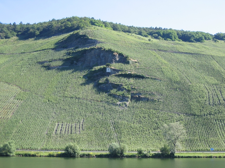 Wehlener Sonnenuhr vineyard in the Mosel valley, Germany