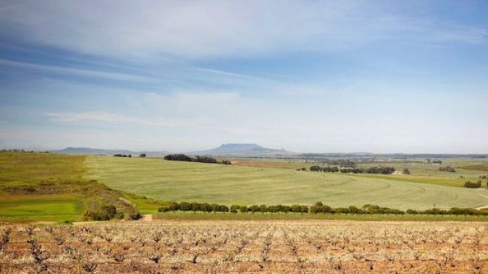 Swartland and Table Mountain