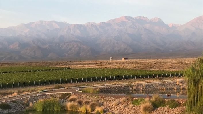 Dawn in the Uco Valley with sun on the Andes