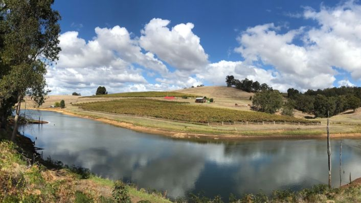 Mazza vineyard WA