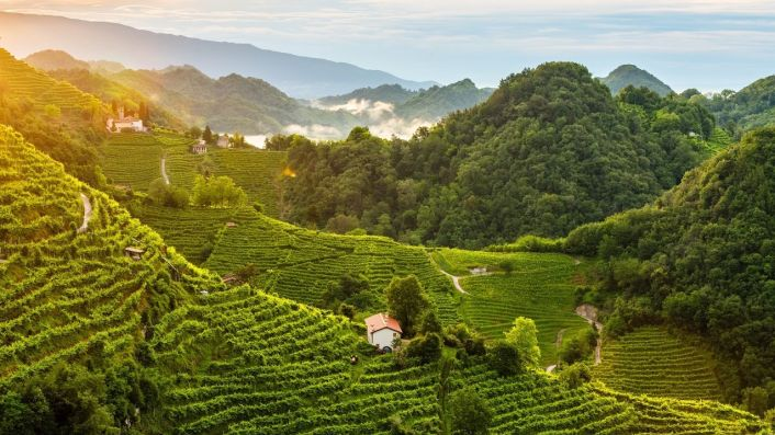 Hills of the Prosecco region in north east Italy