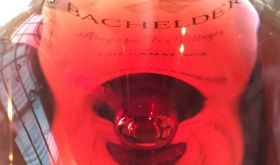 Ontario Gamay close-up from Bachelder