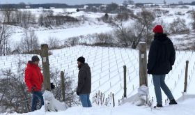 Winter at Domaine du Nival, Quebec, overlooking Albarino vines