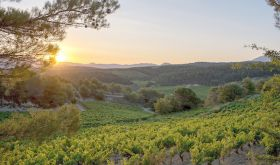 Sunset at Domaine de Mourchon in the southern Rhone