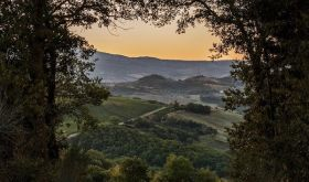 ColleMassari estate in Montecucco, southern Tuscany