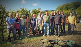 Grape pickers for the Cave de Hunawihr in Alsace in 2018