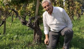 Carlo Ferrini in a Giodo vineyard