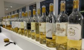 Sauternes bottles in the Southwold-on-Thames tasting of 2016 Bordeaux
