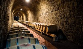 The barrel-filled tunnel of Domaine du Tunnel