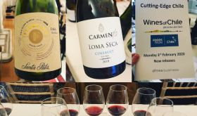 Montage of images from Chile's Cutting Edge tasting in London early 2020