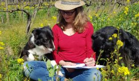 Katia Nussbaum and dogs in vineyard