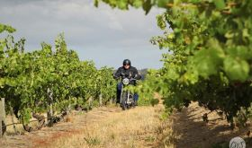 Tim Smith on his Trumph bike in a South Australian vineyard