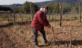 Katia's brother Jono