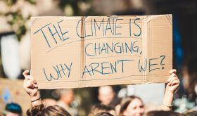 Protest placard - the climate is changing why aren't we?