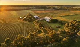 Cullen Wines drone view