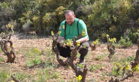 Thomas Teibert with old vines of Domaine de l'Horizon, Roussillon
