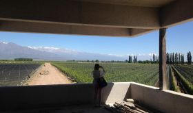 Zuccardi winery in Valle de Uco