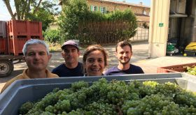 Antech - Francoise and her team at harvest