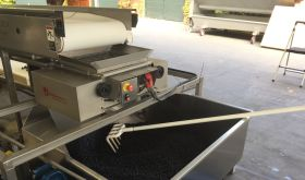 Napa berry table to crusher to bin