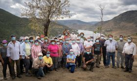 Symington 2020 picking crew in the Douro valley with masks