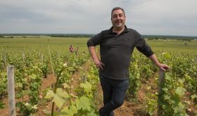 Sebastien Odoul in his Charmes-Chambertin vines