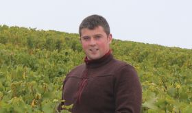 Thomas Ventoura of Chablis
