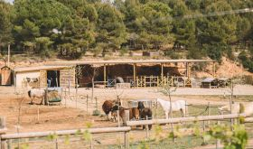 The farm at Gramona, Catalunya