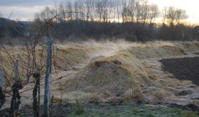 Biodynamic compost by Robert Herbst